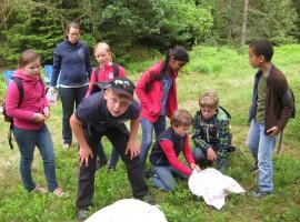 Waldjugendspiele Siedenholz