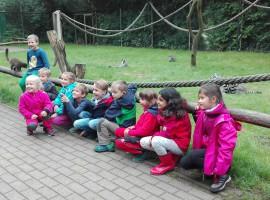 Klasse 1a im Serengeti-Park